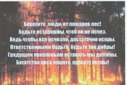 """Всероссийская добровольная интернет- акция  """"Противопожарная безопасность"""""""